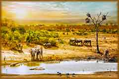 Mobile - PC African safari wildlife jigsaw puzzle