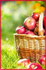 Apple Basket jigsaw puzzle