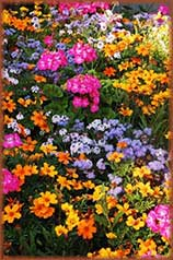 Colorful flower jigsaw puzzle
