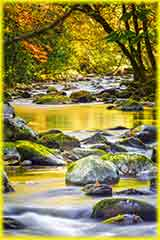 Mobile - PC Great Smoky Mountain stream jigsaw puzzle