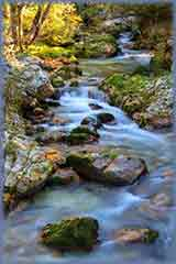 Slovenia Mountain stream jigsaw puzzle
