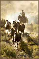 cowboy guiding horses jigsaw puzzle