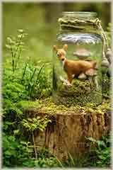 jar in the forest jigsaw puzzle