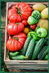 tomatoes and cucumbers jigsaw puzzle