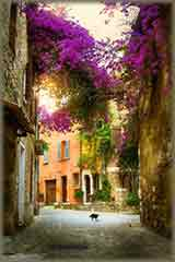 town of Provence jigsaw puzzle