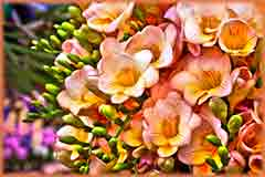 Mobile - PC yellow pink flowers jigsaw puzzle
